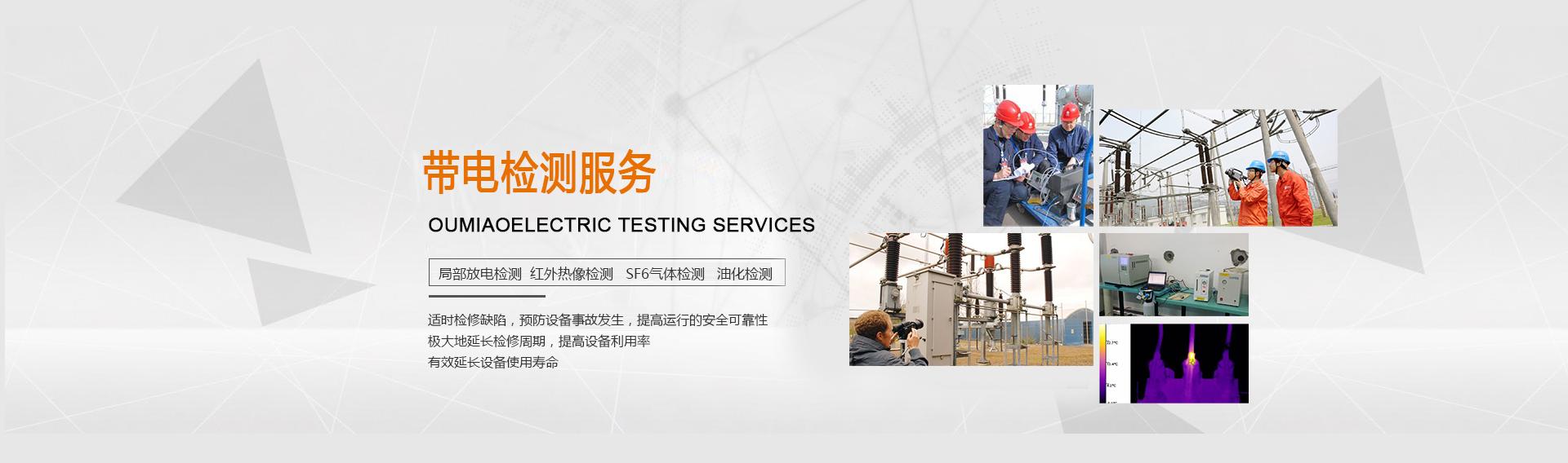 带电检测服务